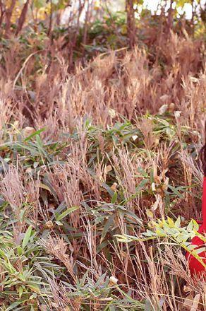 北京西钓鱼台个人写真摄影工作室